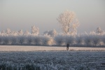 Winter Leveroy 028.jpg